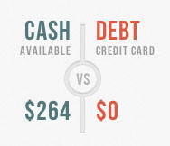a screenshot of the cash vs debt sidebar element on budgeta